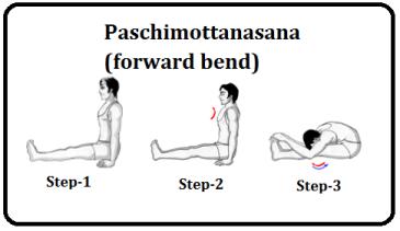 paschimotanasana